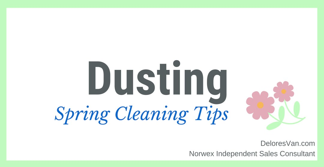 Spring Cleaning Dusting