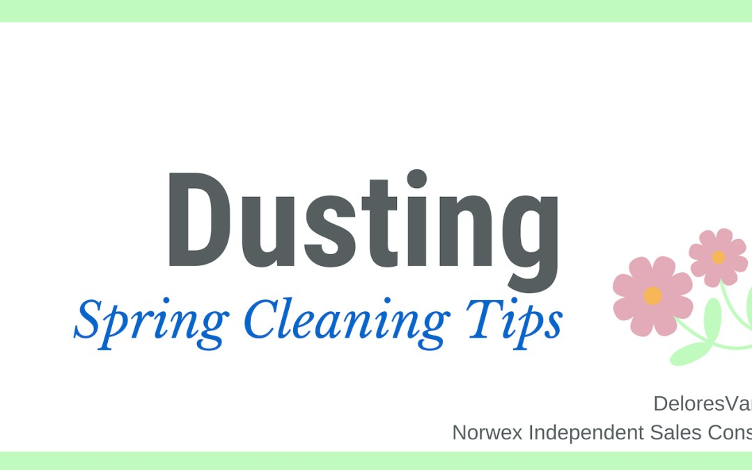 Spring Clean Dusting with Norwex