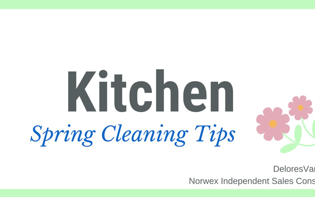Spring Clean Your Kitchen with Norwex
