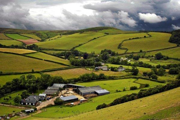 watercolor farm landscape delorian