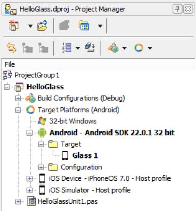 HelloGlassProjectManager
