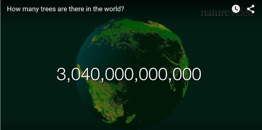 3040000000000