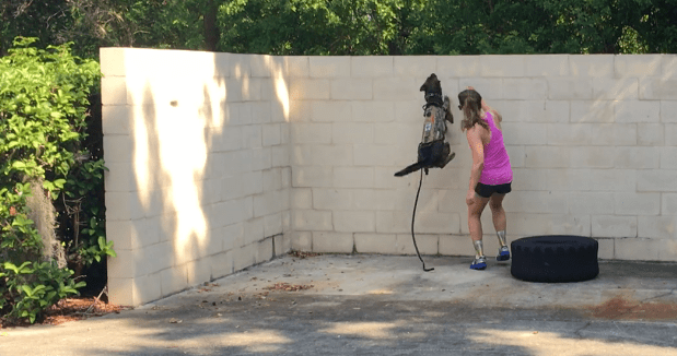 Scout, our Dutch Shepherd, scaling a 6ft wall with Ash after Crossfit