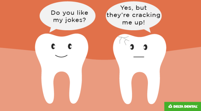 These dental jokes are funny, but they are CRACKING me up.