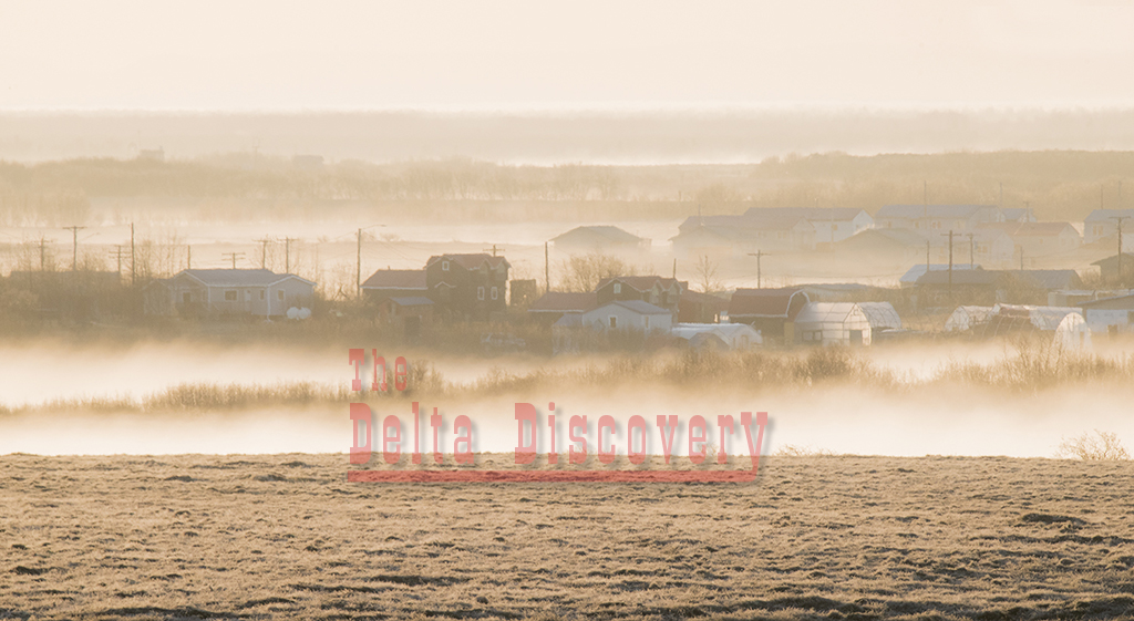 1 tundra fog