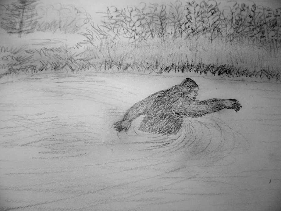 1511-wading-hairy-man