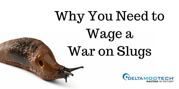 why you need to wage a war on slugs
