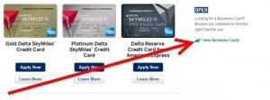 how to find business delta amex cards art