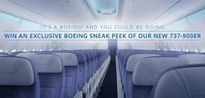 737 delta inside