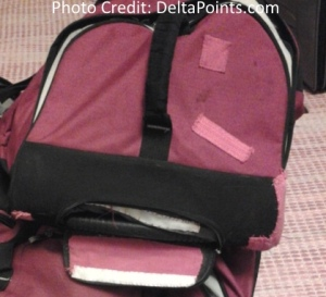 renes bag beat up by delta air lines delta points blog