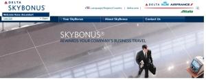 skybonus home page logo