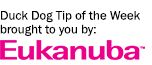 Duck dog tip of the week brought to you by Eukanuba