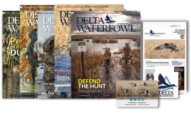 Delta Waterfowl Magazines
