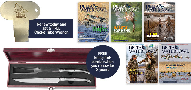 2021 Monthly Renewals_Free Gifts_web