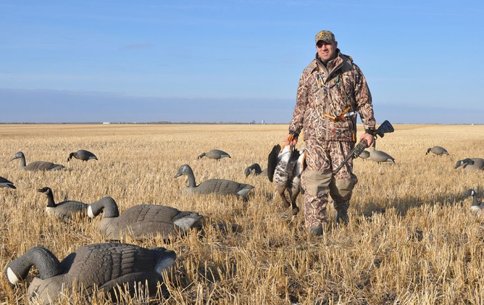 Hunter in field with decoys