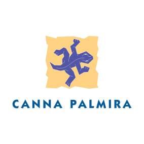 Canna Palmira