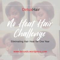 DeluxHair - No Heat Challenge