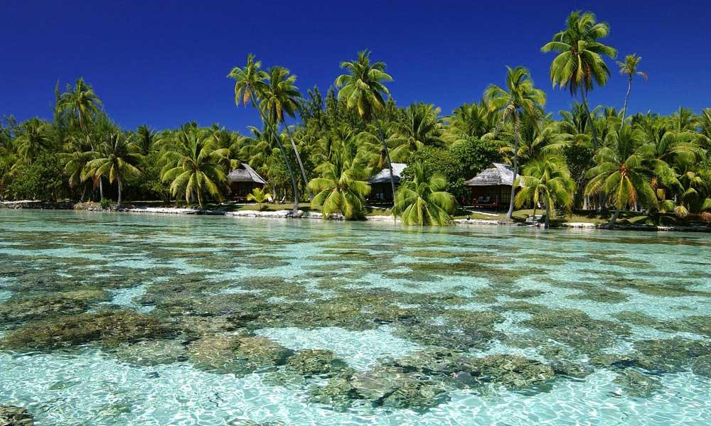 Island French Resort Rates
