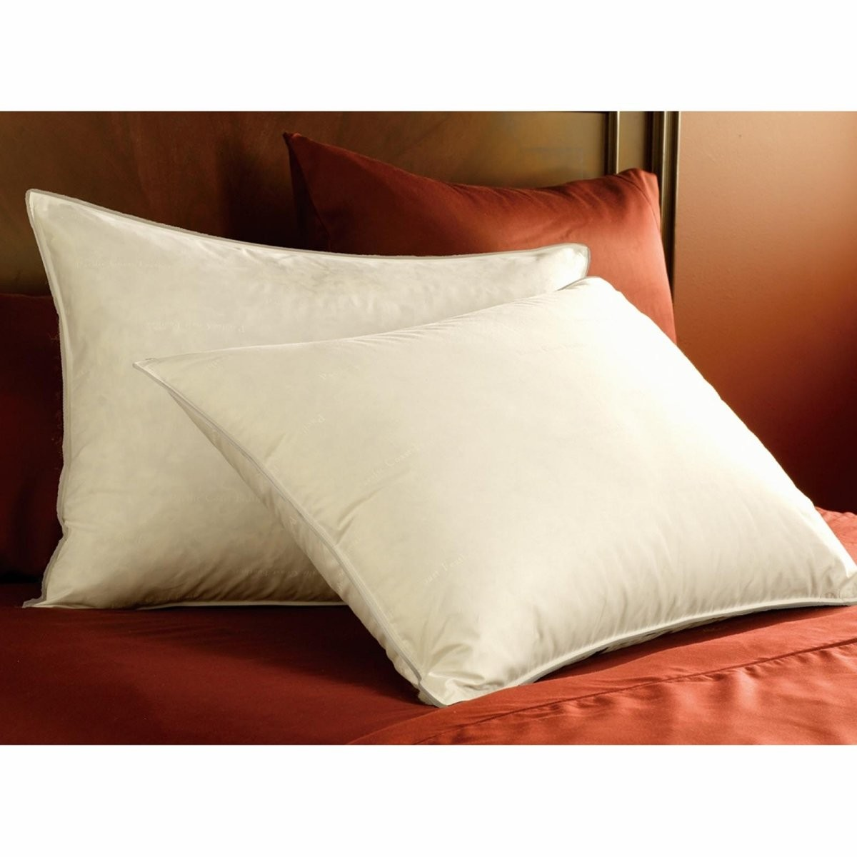My-pillow-factory Pacific Coast Feather Double Downaround Pillow
