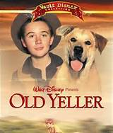 Old yeller Movies that ruined My Childhood