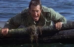 Jaws 2, Roy Scheider. See It Instead Shark Edition