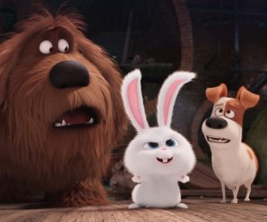 Coming Soon Trailers: The Secret Life of Pets, Mike and Dave Need Wedding Dates