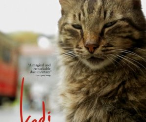 Movie Review: Kedi