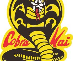 Binge or Purge?: Cobra Kai.