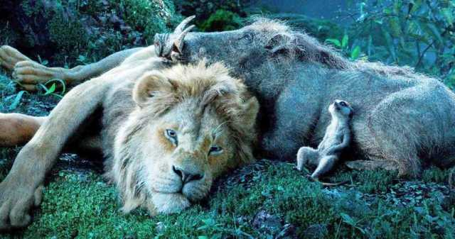 See It Instead: The Lion King.