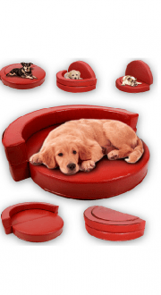 LuDog-sofa-Cover-smal.png