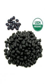 organic-black-beans-small-1.jpg