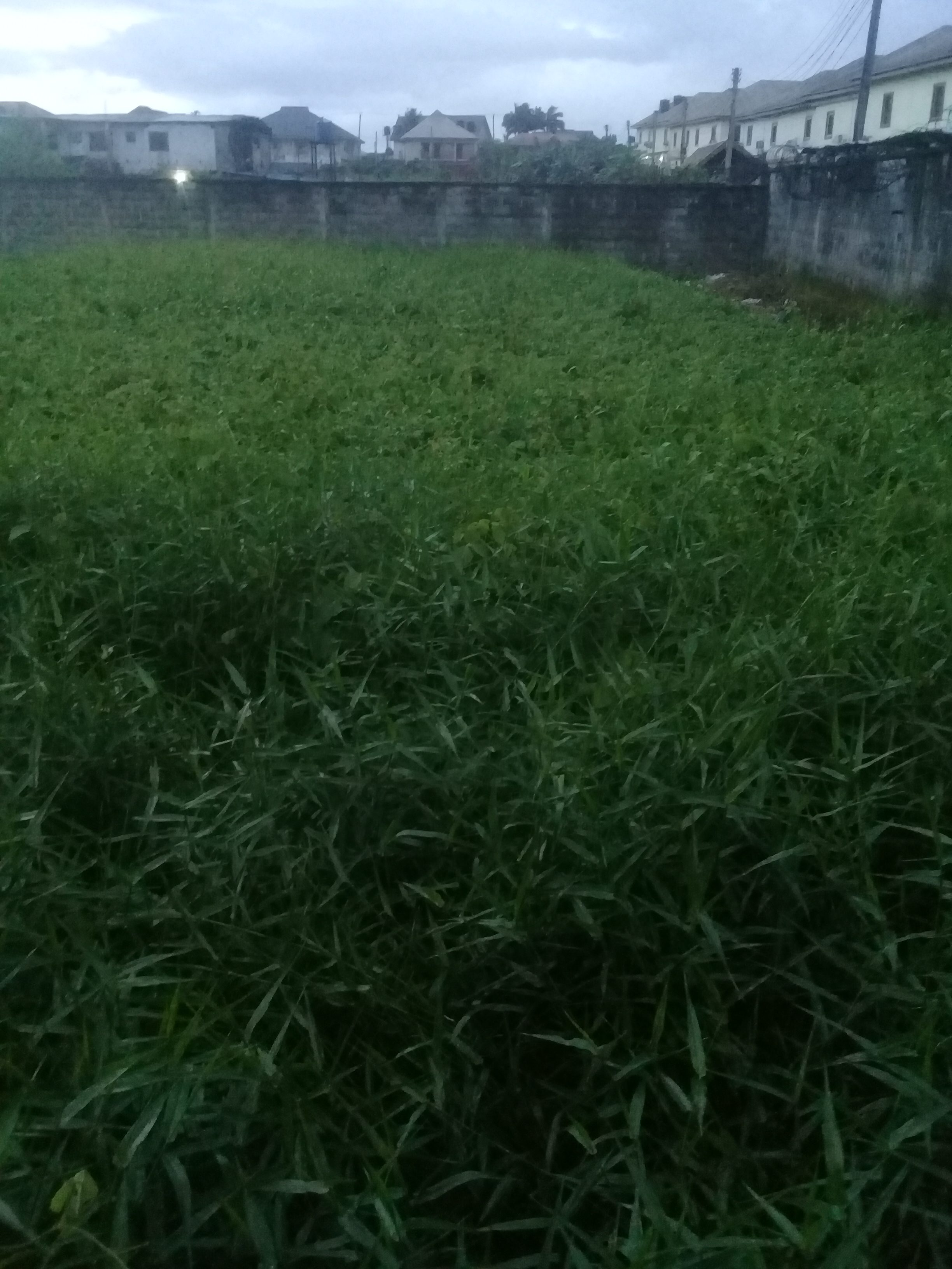 3 Plots of Land at Immanuel Road off Odili Road for sale