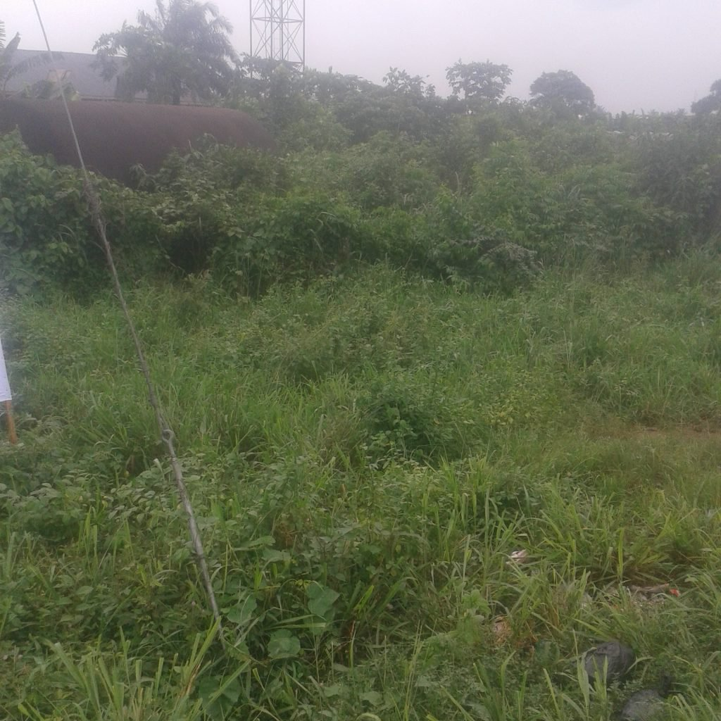 2 plots of land at Eneka for sale