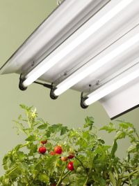 """T5 Grow Light Fixtures 36""""   Gardener's Supply"""