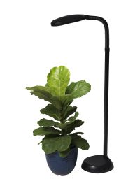 CFL Grow Light - Full Spectrum Floor Plant Lamp ...