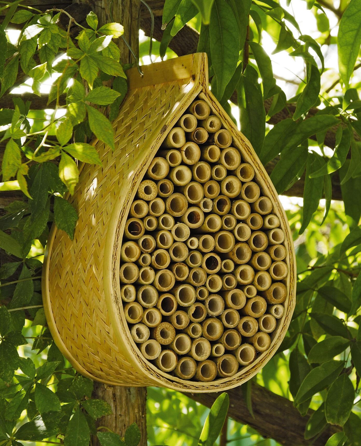 Mason Bee House Mason Bees Gardener's Supply