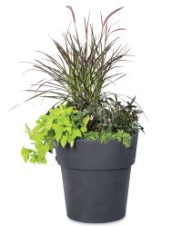 Sonoma Large Indoor Planter - Indoor Flower Pot ...