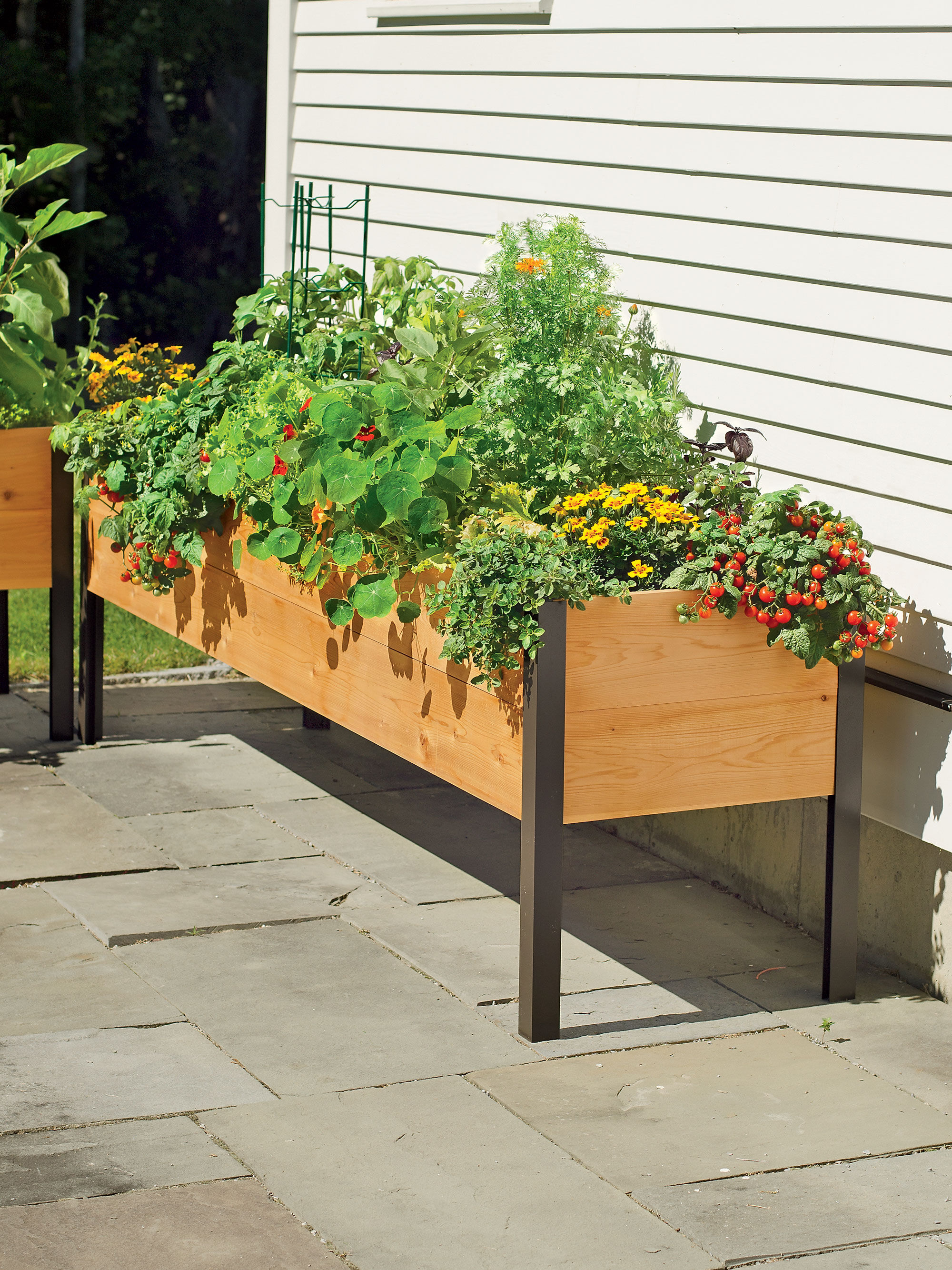planter boxes standing height