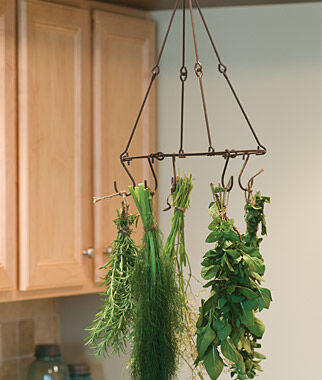kitchen drying rack hotels with kitchens in vegas herb & flower kit - new for 2014 at burpee.com