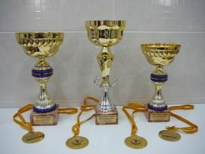 Trofeus i Medalles