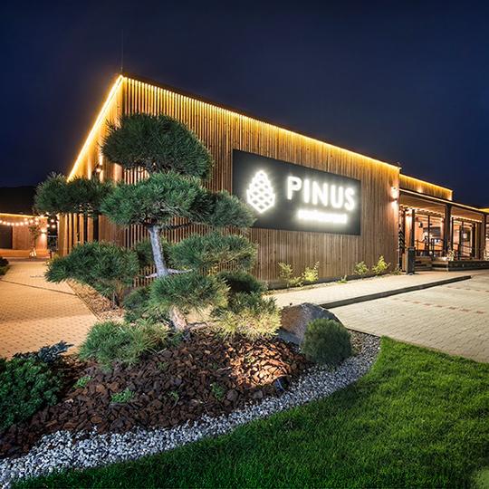 Restaurant PINUS
