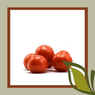 tomaat 2e keuze