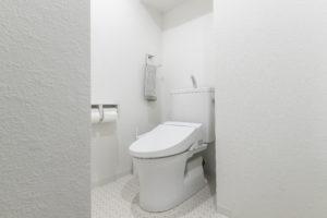 le wc suspendu avec lave mains prix