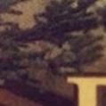 ADVENTSKALENDER-DEMECO-19.Dezember