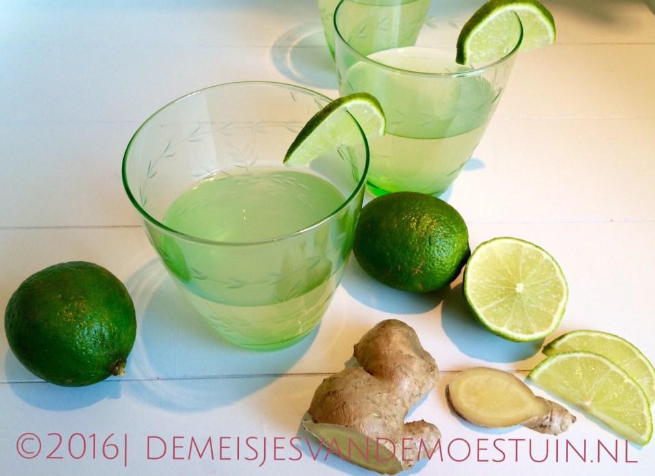 virgin cocktail van gemberbier en kokoswater