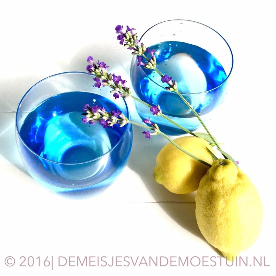 citroen-lavendel limonade