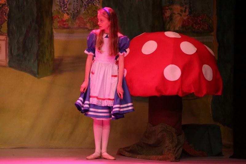 Alice – 2013