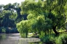 """În perioada comunistă, Lacul Valea Morilor, din Chișinău, a purtat numele de Lacul Comsomolist. Comsomol (Комсомол) este o abreviere silabică a denumirii în limba rusă a """"Uniunii Tineretului Comunist. Sursa:https://ro.wikipedia.org/wiki/Comsomol"""