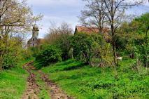 Intrarea în satul Deleni-Obârșie