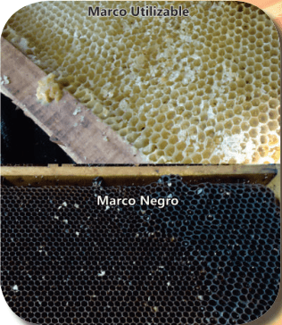 Marcos reutilizables y marcos no reutilizables (marcos negros)